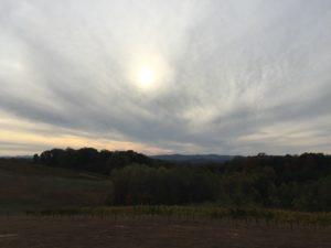 Limo wine tour NC