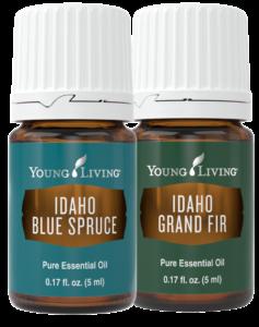 Idaho Blue Spruce & Grand Fir