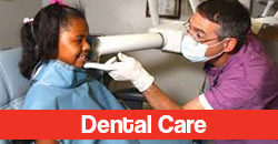 Dental Care Button