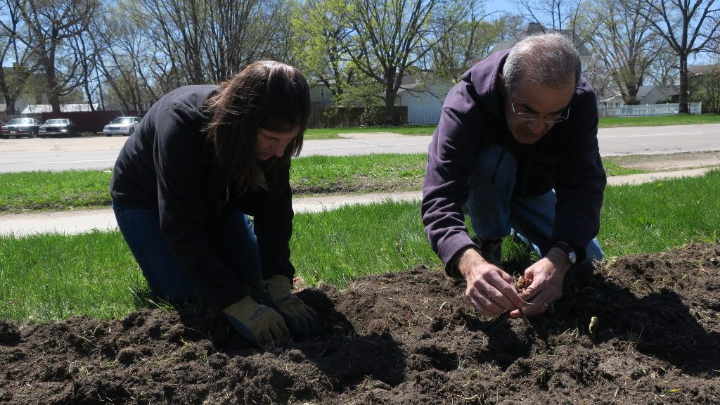 Two Peoples Planting First Crops in Peoples Garden