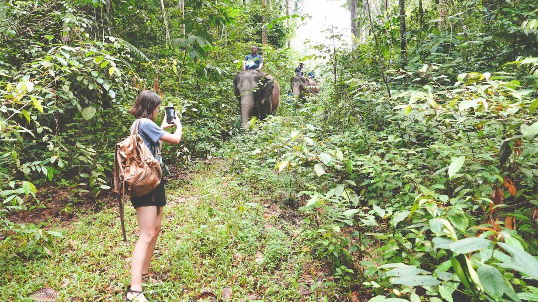 Malaysia Elephant Sanctuary & Kampung Bongsu Farmstay