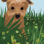 Yorkie in Flower Field Illustration