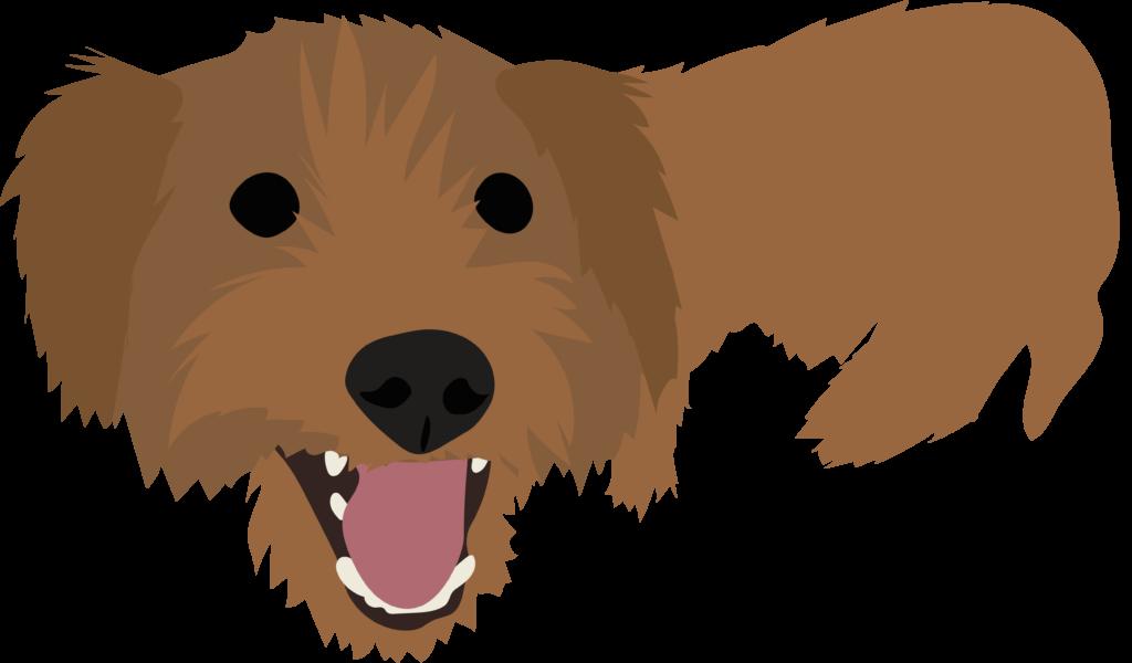 Custom Pet Portrait Illustration
