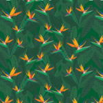 Bird of Paradise Digital Illustrated Pattern