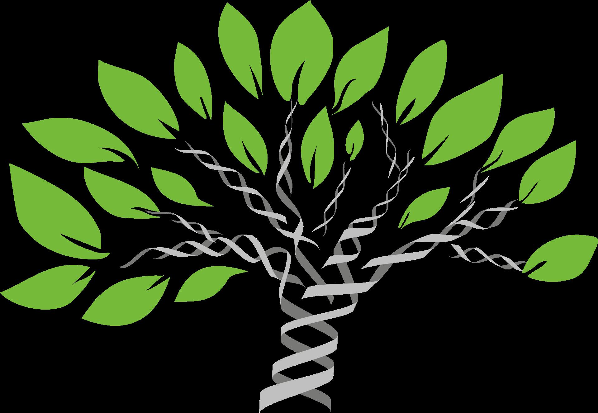 gene-tree-1490270