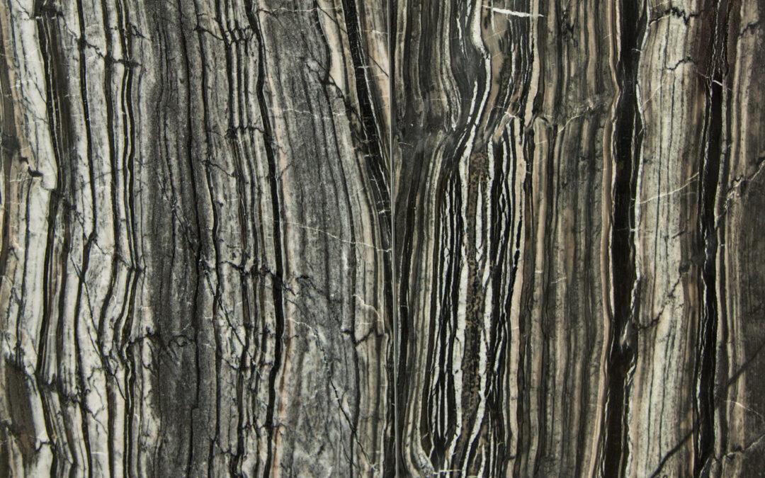 Black Serpentgiante