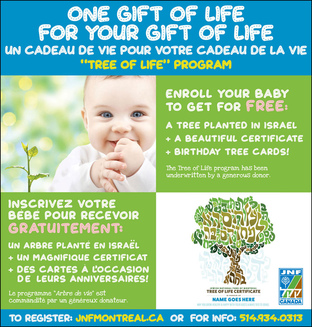 Tree of Life Program