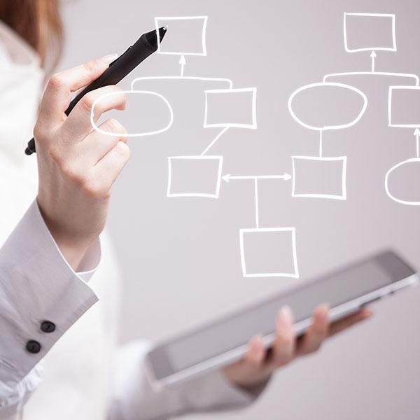 Organization Design Strategy
