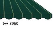 Ivy 3960