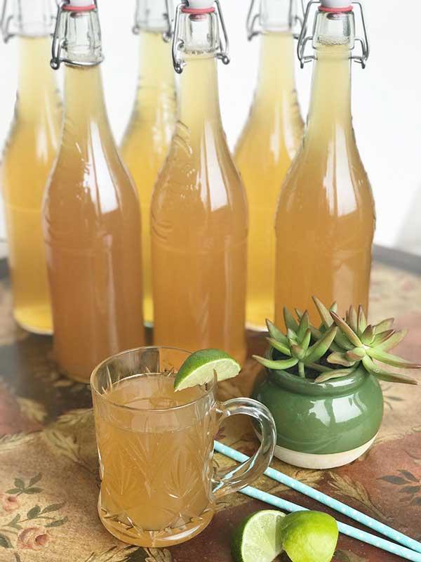 DRIP Botanical Tea Bar - Kombucha Tea