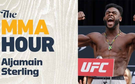Aljamain Sterling Hopes To 'Lure' Dominick Cruz Into A Bout