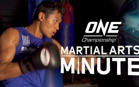 Martial Arts Minute: Episode 1