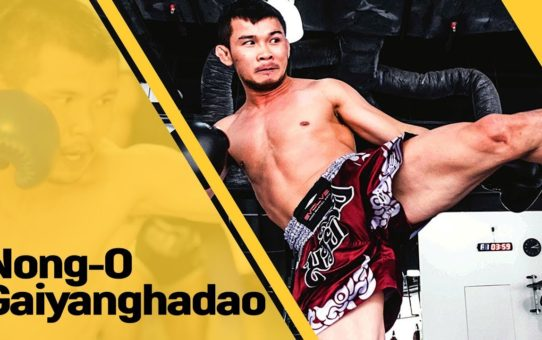 Nong-O Gaiyanghadao | ONE: HEROES OF HONOR | 20 April 2018 | Manila