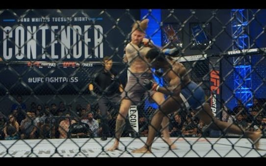 Dana White Tuesday Night Contender Series – Week 2 Highlights