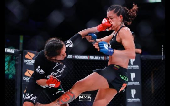 Bellator 201 Highlights: Ilima-Lei Macfarlane Defends Title – MMA Fighting