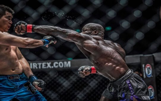 ONE Highlights | Alain Ngalani's Dominant Knockouts
