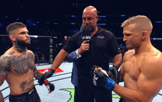 UFC 227: Dillashaw vs Garbrandt 2 – In Search of a Dream