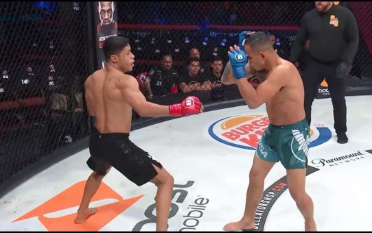 Bellator 214: Weber Almeida vs. Odan Chinchilla – TKO moment