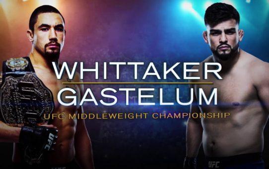 UFC 234: The Next Level