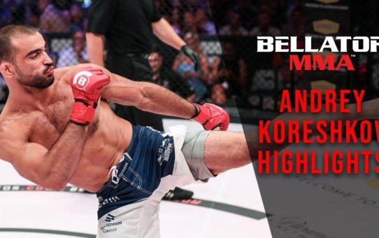 Andrey Koreshkov Highlights
