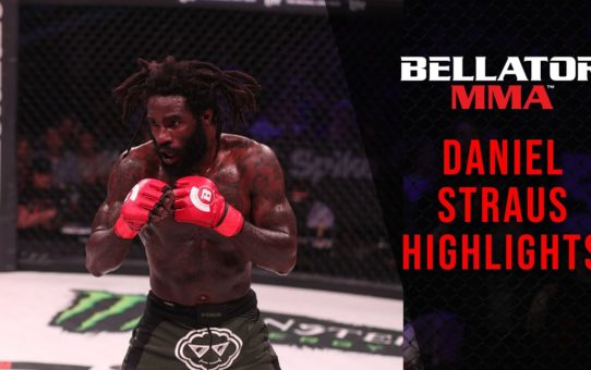 Daniel Straus Highlights