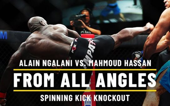 Alain Ngalani Astonishing Spinning Kick Knockout | ONE From All Angles