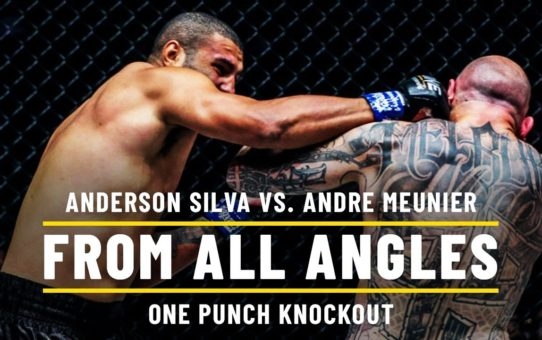 Anderson Silva's Devastating ONE Punch Knockout | ONE From All Angles