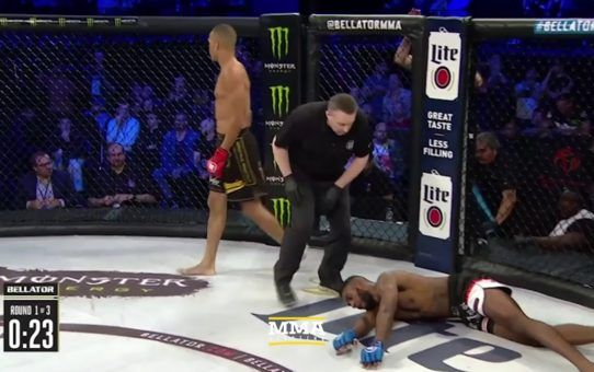 Raymond Daniels Delivers Spectacular Knockout at Bellator Birmingham – MMA Fighting