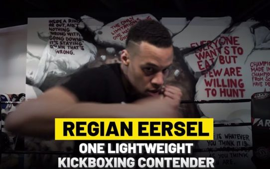 Regian Eersel's Game-Changing Switch To Martial Arts | ONE Feature