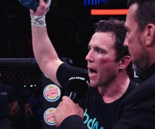 Fight Night   Chael Sonnen – Bellator 222
