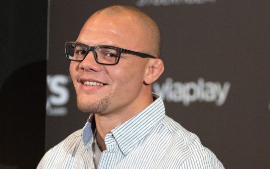 UFC Stockholm: Post-fight Press Conference