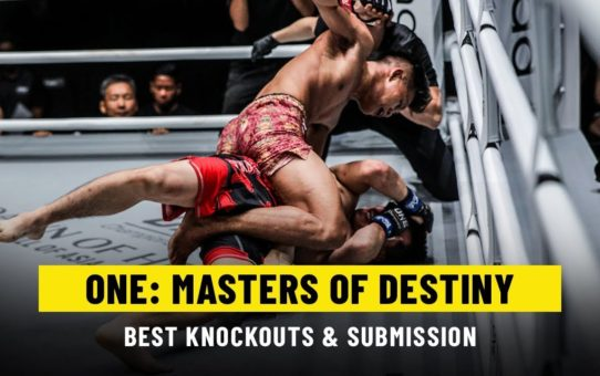 Best Knockouts & Submissions | ONE: MASTERS OF DESTINY
