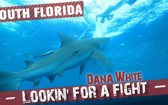 Dana White: Lookin' for a Fight – Season 4 Ep.2