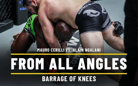 Mauro Cerilli vs. Alain Ngalani | ONE From All Angles