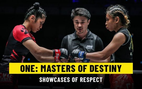 Shows Of Respect | ONE: MASTERS OF DESTINY