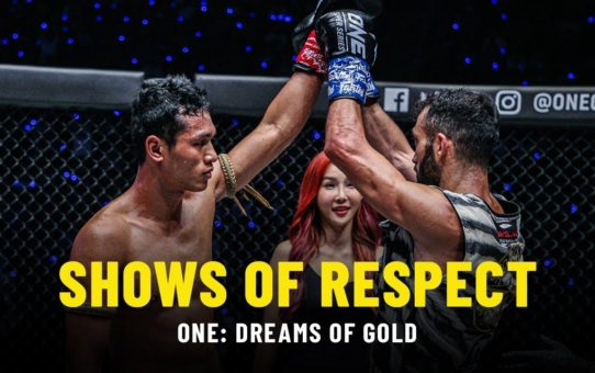 Shows Of Respect | ONE DREAMS OF GOLD