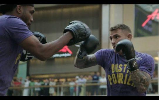 UFC 242: Open Workout Highlights