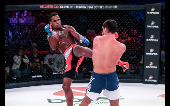 Bellator 229 Highlights: Lorenz Larkin Wins Close Call – MMA Fighting