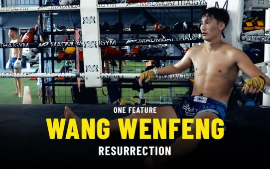 Wang Wenfeng's Resurrection | ONE Feature