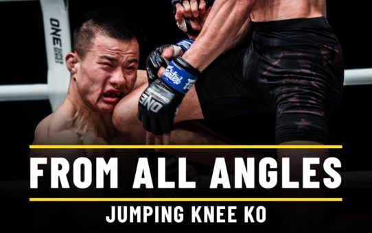 Miao Li Tao vs. Jeremy Miado | ONE From All Angles