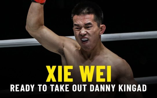 Xie Wei Ready To Take Out Danny Kingad | ONE Feature