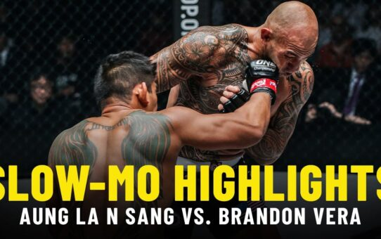 Aung La N Sang vs. Brandon Vera | Slow-Mo Fight Highlights