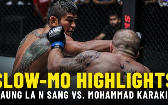 Aung La N Sang vs. Mohammad Karaki | Slow-Mo Fight Highlights