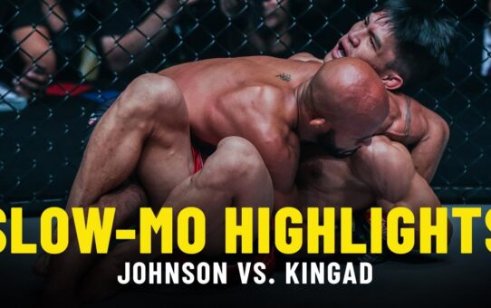 Demetrious Johnson vs. Danny Kingad | Slow-Mo Fight Highlights
