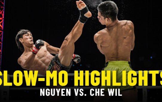 Nguyen Tran Duy Nhat vs. Azwan Che Wil | Slow-Mo Fight Highlights