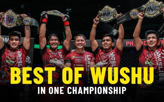 The Best Of ONE Championship's Wushu Strikers