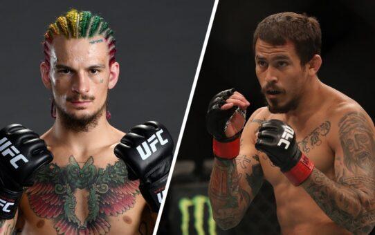 UFC 252: O'Malley vs Vera – Preview
