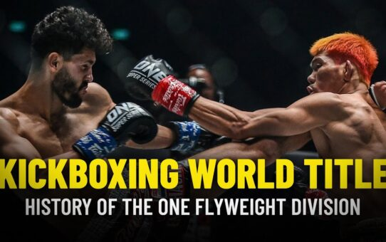 History Of The ONE Flyweight Kickboxing World Championship