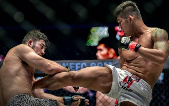 Aung La N Sang's ULTIMATE Striking Highlights