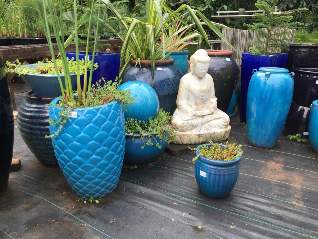 Garden ponds ceramic pots water garden aquatic plants